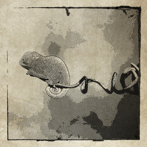 An Etchings App Photo